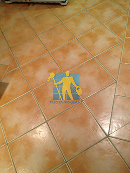 Clean ceramic tiles